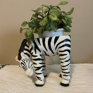 Zebra Decoration